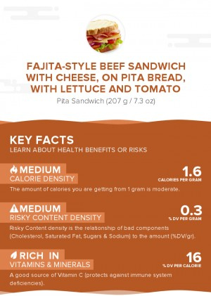 Fajita-style beef sandwich with cheese, on pita bread, with lettuce and tomato