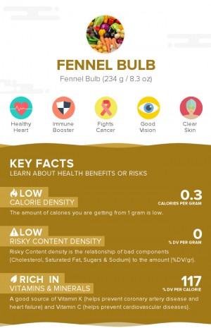 Fennel bulb, raw