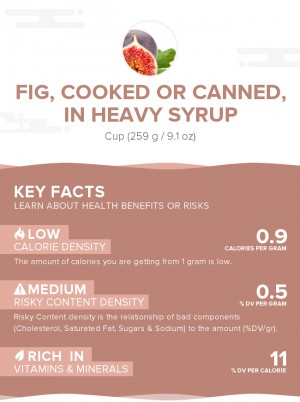 Fig, cooked or canned, in heavy syrup