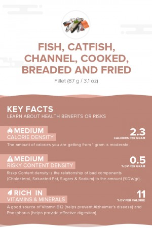 Fish, catfish, channel, cooked, breaded and fried