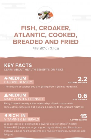 Fish, croaker, Atlantic, cooked, breaded and fried
