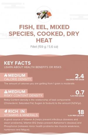 Fish, eel, mixed species, cooked, dry heat