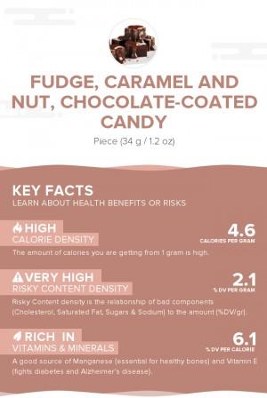 Fudge, caramel and nut, chocolate-coated candy