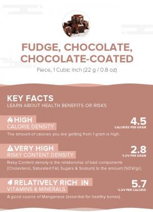Fudge, chocolate, chocolate-coated