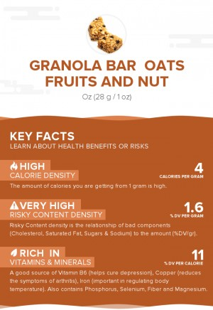 Granola Bar  Oats Fruits And Nut