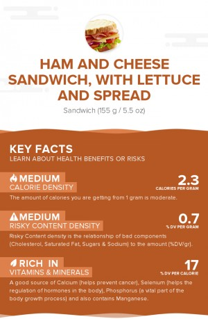 Ham and cheese sandwich, with lettuce and spread