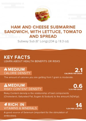 Ham and cheese submarine sandwich, with lettuce, tomato and spread