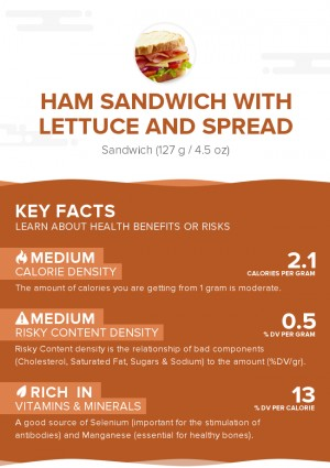 Ham sandwich with lettuce and spread