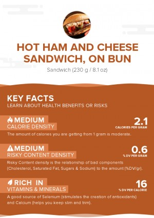 Hot ham and cheese sandwich, on bun