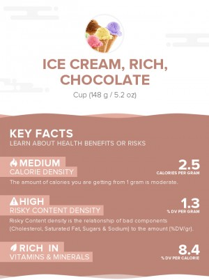 Ice cream, rich, chocolate