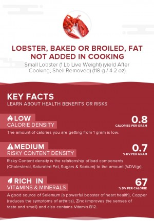 Lobster, baked or broiled, fat not added in cooking