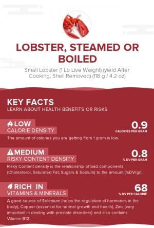 Lobster, steamed or boiled