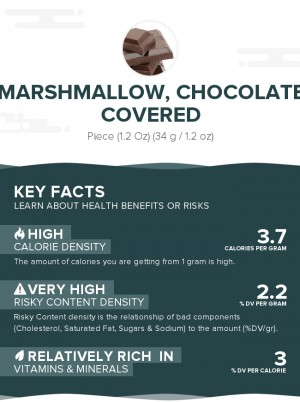 Marshmallow, chocolate covered