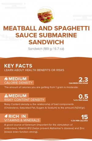 Meatball and spaghetti sauce submarine sandwich