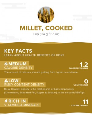 Millet, cooked