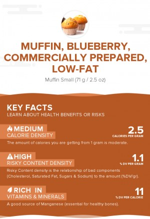 Muffin, blueberry, commercially prepared, low-fat