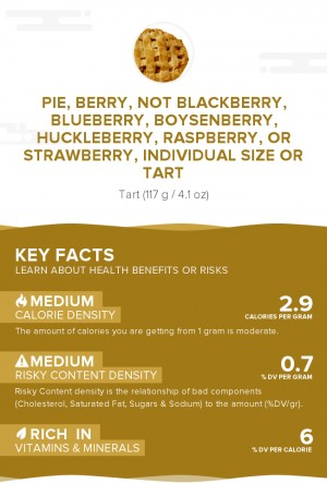 Pie, berry, not blackberry, blueberry, boysenberry, huckleberry, raspberry, or strawberry, individual size or tart