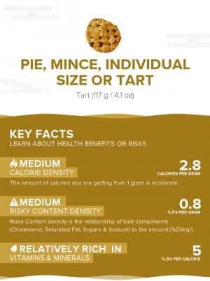 Pie, mince, individual size or tart