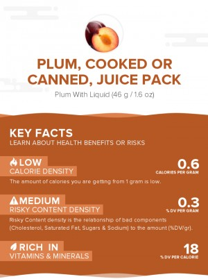 Plum, cooked or canned, juice pack