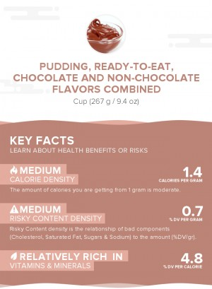 Pudding, ready-to-eat, chocolate and non-chocolate flavors combined
