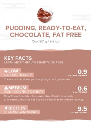 Pudding, ready-to-eat, chocolate, fat free