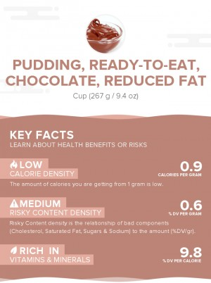 Pudding, ready-to-eat, chocolate, reduced fat