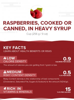 Raspberries, cooked or canned, in heavy syrup