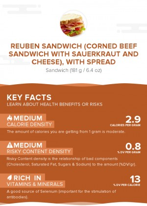 Reuben sandwich (corned beef sandwich with sauerkraut and cheese), with spread