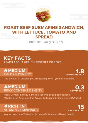 Roast beef submarine sandwich, with lettuce, tomato and spread
