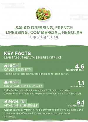 Salad dressing, french dressing, commercial, regular