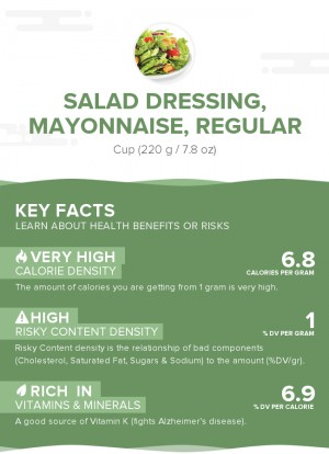 Salad dressing, mayonnaise, regular