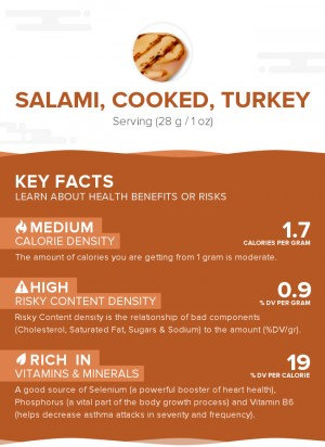 Salami, cooked, turkey
