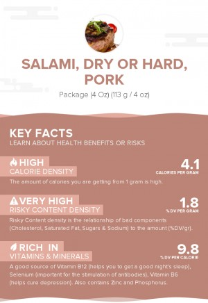 Salami, dry or hard, pork