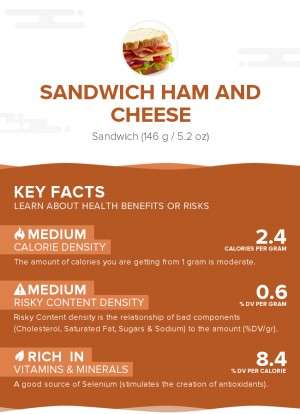 Sandwich Ham and Cheese