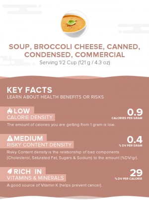 Soup, broccoli cheese, canned, condensed, commercial