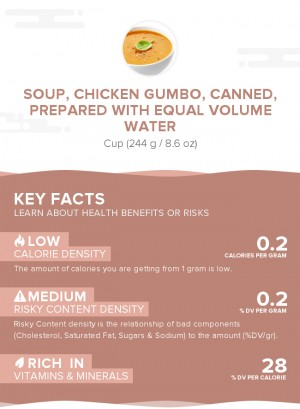 Soup, chicken gumbo, canned, prepared with equal volume water