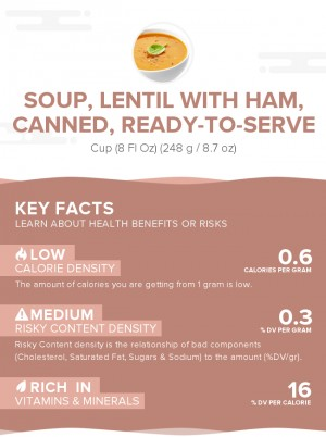 Soup, lentil with ham, canned, ready-to-serve