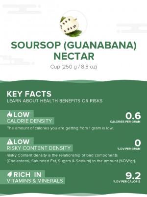 Soursop (Guanabana) nectar