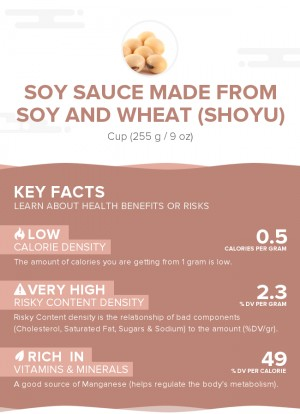 Soy sauce made from soy and wheat (shoyu)