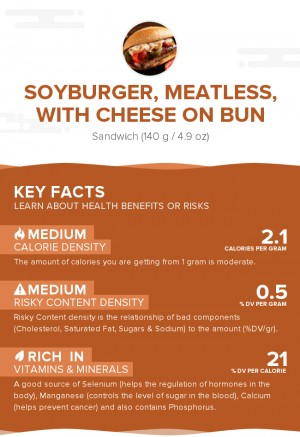 Soyburger, meatless, with cheese on bun