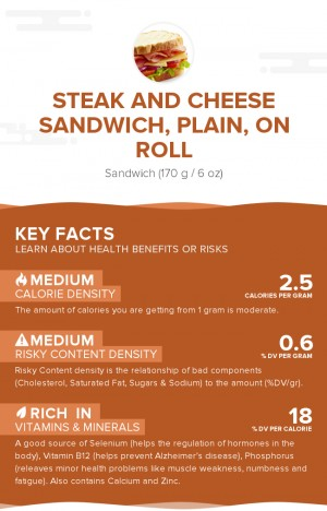 Steak and cheese sandwich, plain, on roll