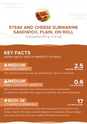 Steak and cheese submarine sandwich, plain, on roll
