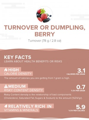 Turnover or dumpling, berry