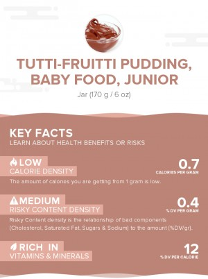 Tutti-fruitti pudding, baby food, junior