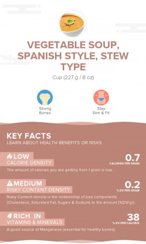 Vegetable soup, Spanish style, stew type