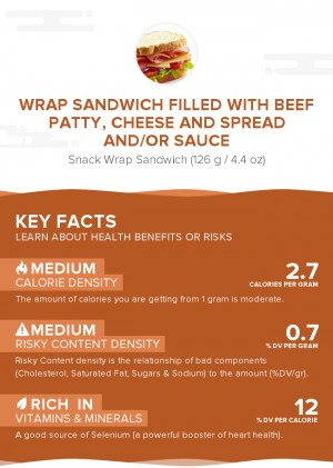 Wrap sandwich filled with beef patty, cheese and spread and/or sauce