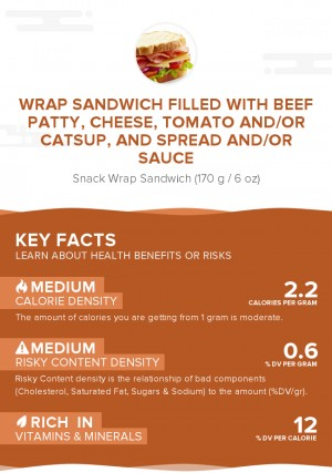 Wrap sandwich filled with beef patty, cheese, tomato and/or catsup, and spread and/or sauce