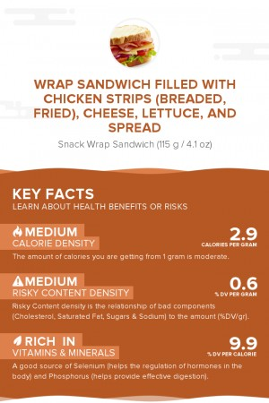 Wrap sandwich filled with chicken strips (breaded, fried), cheese, lettuce, and spread