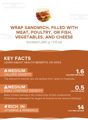 Wrap sandwich, filled with meat, poultry, or fish, vegetables, and cheese