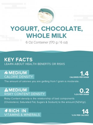 Yogurt, chocolate, whole milk